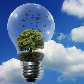 Winservice informatica eco-friendly